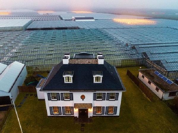 Nông nghiệp Hà Lan nuôi được cả thế giới