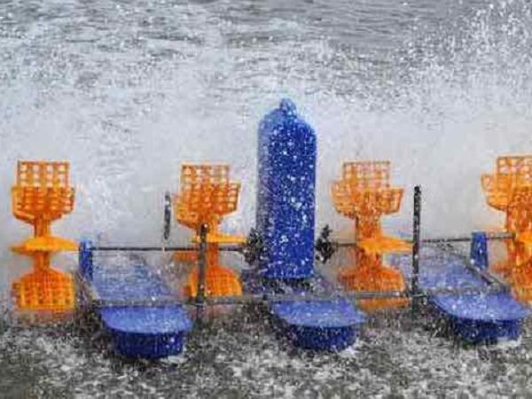 NT-Sử dụng quạt nước trong nuôi tôm