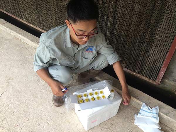 N-Lựa chọn vaccine phù hợp cho heo