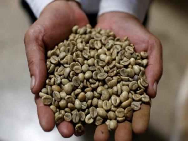 Việt Nam trở thành nước cung ứng cà phê số 1 của Nhật Bản