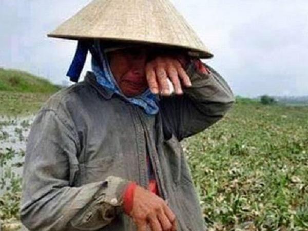"""Nông dân cần cảnh giác thủ đoạn lừa đảo của công ty """"ma"""" này, tránh """"tiền mất tật mang"""""""