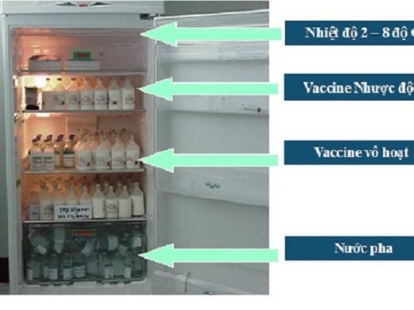 N-Hướng dẫn bảo quản vắc xin thú y tại kho và tại các trại chăn nuôi - Phần 2