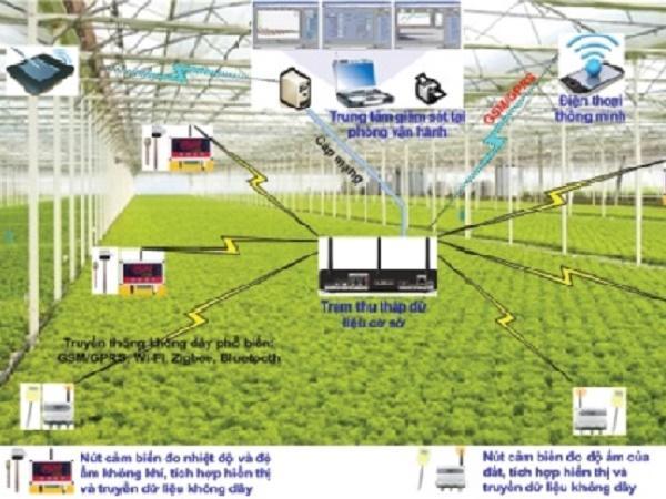 Tổng hợp những thiết bị cảm biến quan trọng trong trồng trọt