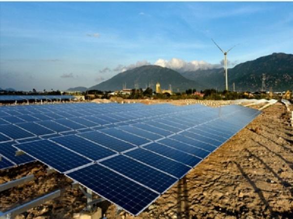 Mới! Pin mặt trời kết hợp nông nghiệp công nghệ cao