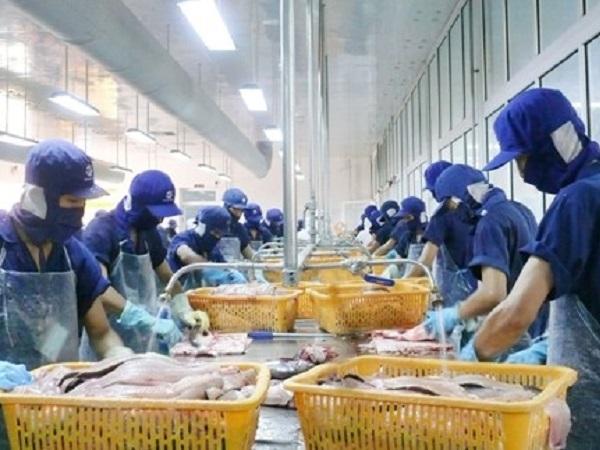 Phòng, chống dịch COVID-19 trong kinh doanh thực phẩm thủy sản