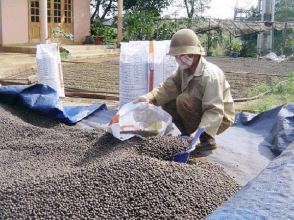 Giá cà phê tăng thẳng đứng, cao nhất từ hơn 1 năm qua
