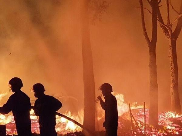 Cháy vườn sầu riêng, mít rộng hơn 10.000m2 trong đêm, chưa rõ nguyên nhân