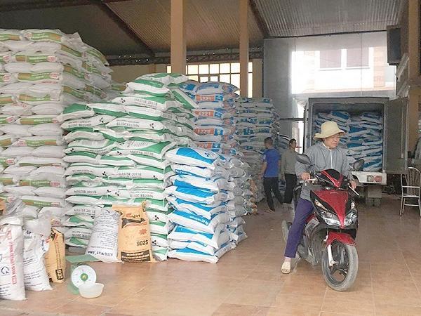 Giá thức ăn chăn nuôi tăng rất cao, có loại tăng tới 45.000 đồng/bao, nông dân điêu đứng