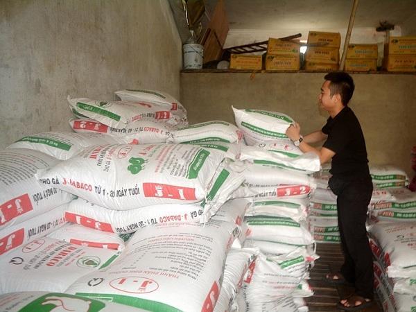 Giá thức ăn chăn nuôi tiếp tục tăng cao, thận trọng tái đàn