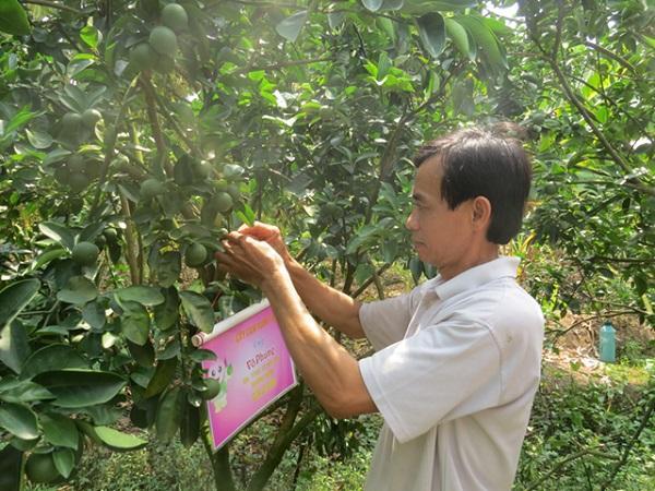 Nông dân đổi mới tư duy sản xuất, tiếp cận công nghệ 4.0