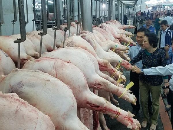 Nhập khẩu thịt lợn tăng vọt, giá lợn hơi trong nước chịu áp lực