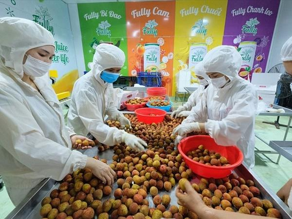 Công nghệ nông nghiệp sẽ hỗ trợ tăng trưởng công nghệ cao của Việt Nam