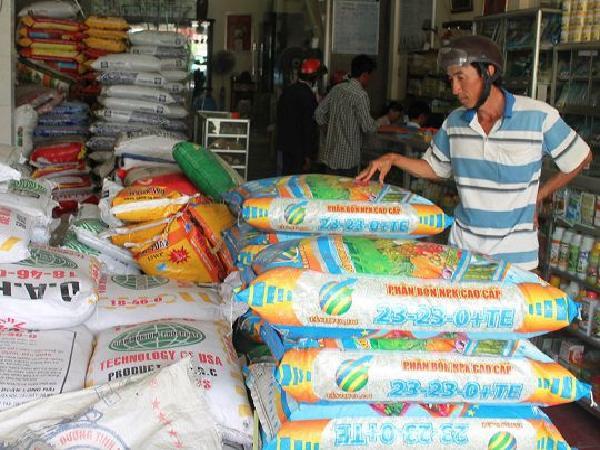 Phân bón đồng loạt tăng giá trước vụ mùa, nông dân 'méo mặt' vì chưa làm đã lỗ
