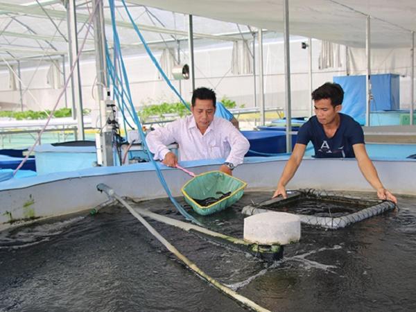 Ứng dụng khoa học công nghệ hình thành các mô hình canh tác bền vững