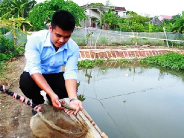 NT-Những điều cần lưu ý khi nuôi cá chạch sụn