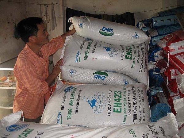 Người chăn nuôi 'tăng xông' vì lần thứ 8 thức ăn chăn nuôi tăng giá