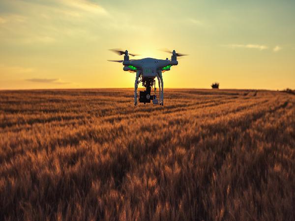 Nông nghiệp 4.0: Đưa máy bay không người lái, robot vào.. trồng rau