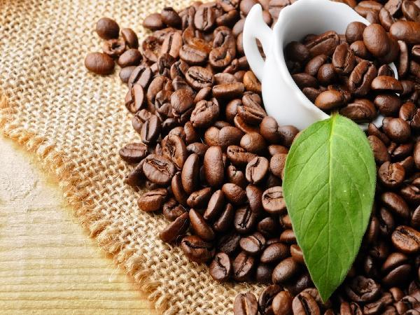 Cà phê sạch khó tìm đầu ra