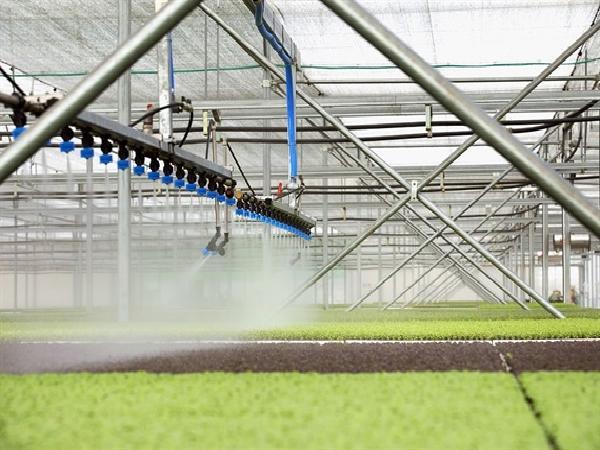Nông nghiệp công nghệ cao: Phép màu Israel và giải pháp cho Việt Nam