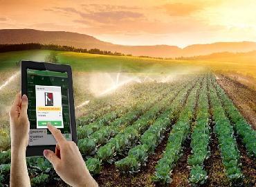 """Ước mơ về """"bức tranh"""" nông nghiệp 4.0"""