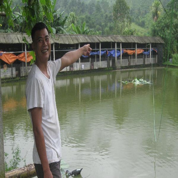 Hà Giang: Người nông dân làm giàu từ trang trại tổng hợp